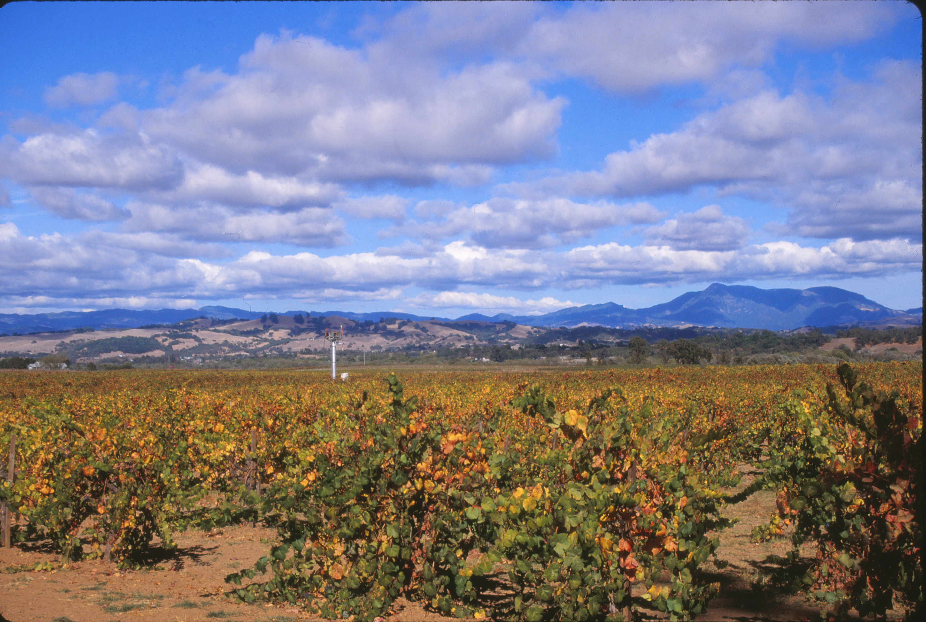 Wine Country California - Wikipedia